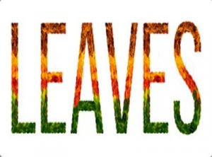 Leaves - перевод?