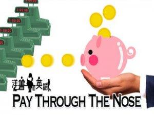 Pay through the nose - перевод?