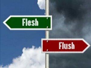 Flush, Flesh - перевод?