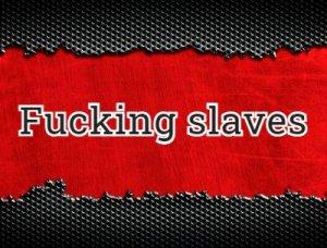 Fucking slaves перевод?