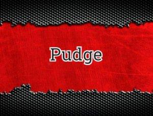 Pudge - что значит?