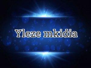 Yleze mkidia - перевод?