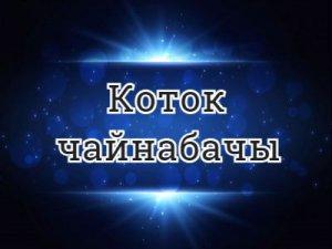 Коток чайнабачы - перевод?