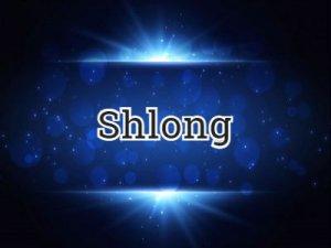 Shlong - что значит?