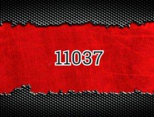 11037 - что значит?
