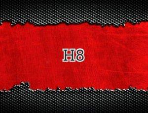 H8 - что значит?