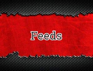 Feeds - что значит?