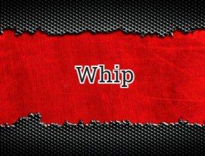 Whip - перевод?