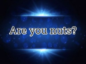 Are you nuts - перевод?
