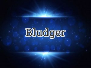 Bludger - перевод?