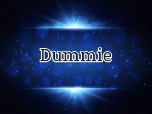 Dummie - перевод?