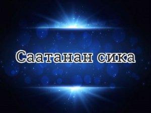 Саатанан сика - перевод?