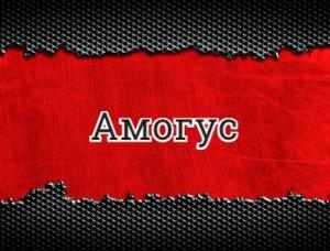 Амогус - что значит?