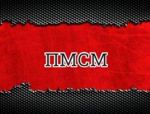 ПМСМ - что значит?