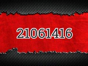 21061416 - что значит?