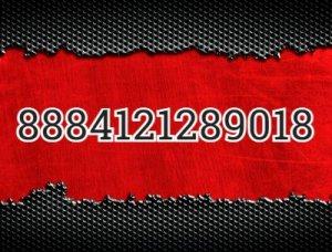 8884121289018 - что значит?