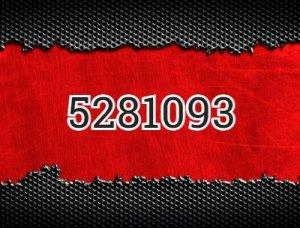 5281093 - что значит?