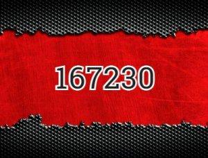 167230 - что значит?