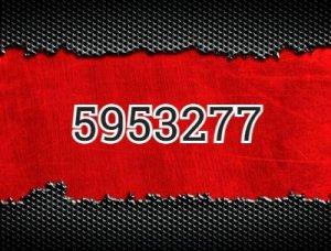 5953277 - что значит?