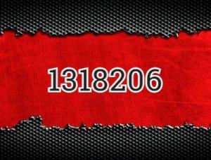 1318206 - что значит?