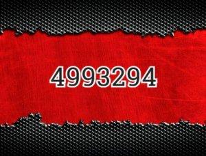 4993294 - что значит?