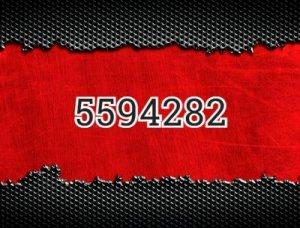 5594282 - что значит?
