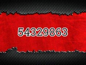 54329863 - что значит?