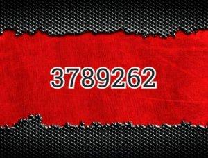 3789262 - что значит?