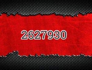 2627930 - что значит?