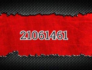 21061461 - что значит?