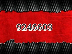9246603 - что значит?