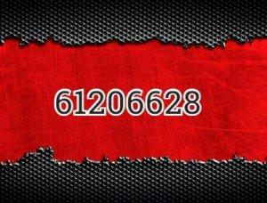 61206628 - что значит?